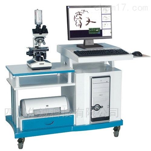 BX-9100型显微影像工作站(白带分析)