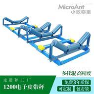XY-ICS12001200型 高精度电子皮带秤厂家定制