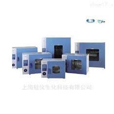上海一恒电热恒温培养箱DHP-9012