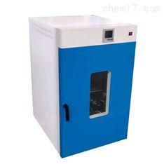 DGG-9000系列新款立式電熱鼓風干燥箱