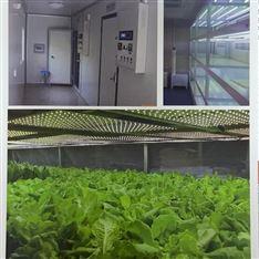 LED光照板式人工氣候室