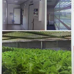 LED光照板式人工气候室