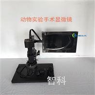 ZK-4KM+小动物高清数码手术显微镜微观测距实验仪器