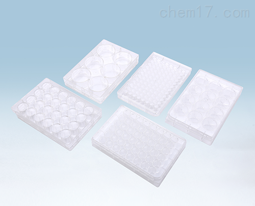 Cell Culture 6-Well plate