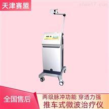 天津赛盟微波治疗仪 TJSM-92-BMI