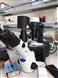 奧林巴斯CKX53倒置顯微鏡