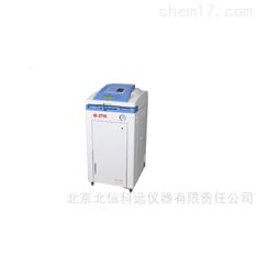高压灭菌仪  触摸式高压灭菌仪  双向检测内压力好温度灭菌仪