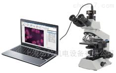 生物顯微圖像分析儀