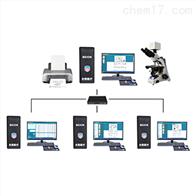 BEION V4.90北昂医学图像软件