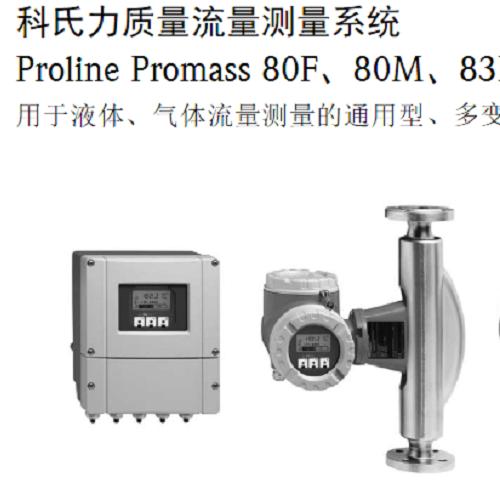 Proline Promass I 100 质量流量计