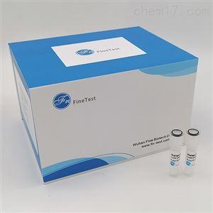 Human CD28 ELISA试剂盒
