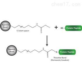 786-794G-Biosciences 巯基偶联树脂 蛋白纯化