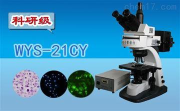 WYS-21CY科研级三目荧光显微镜