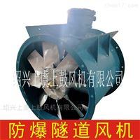 SDS(R)-10-4P-15w防爆隧道射流风机(低噪声)