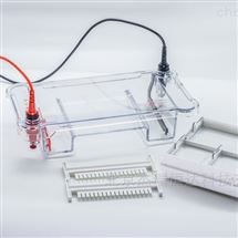 HE-120多功能水平电泳槽