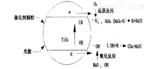 光催化图.jpg