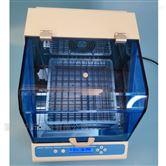 HY230 HY350恒温孵育摇床 混匀振荡混合器