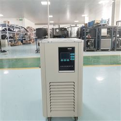 DLSB-10/10冷却水循环机 10L低温冷却循环泵
