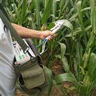 SY-1023植物蒸騰速率測定儀 農作物葉片蒸騰檢測儀