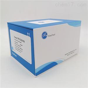 Human MAP1LC3B ELISA试剂盒