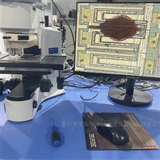OLYMPUS BX41M-LED金相显微镜 奥林巴斯