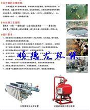 景观鱼池净化消毒处理系统