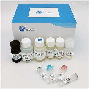 Human PPY ELISA试剂盒