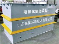 潍坊电絮凝设备生产厂家森洋