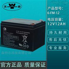 天威铅酸蓄电池