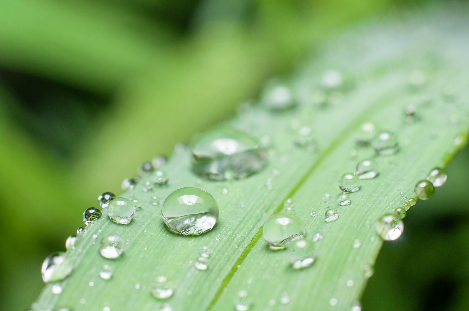 又是一年梅雨季 温湿度仪器仪表、气象监测设备来护航