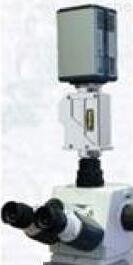 3D显微成像