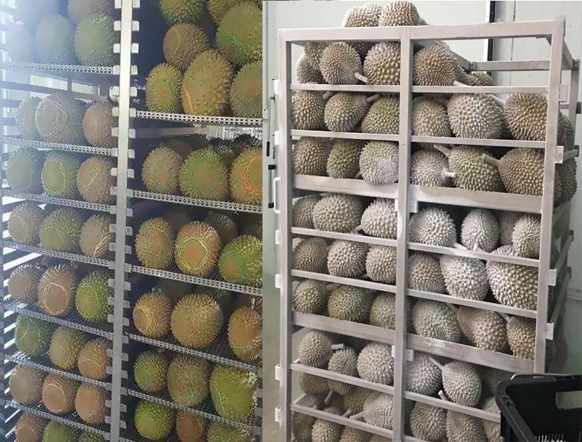 液氮冷凍機產品圖片