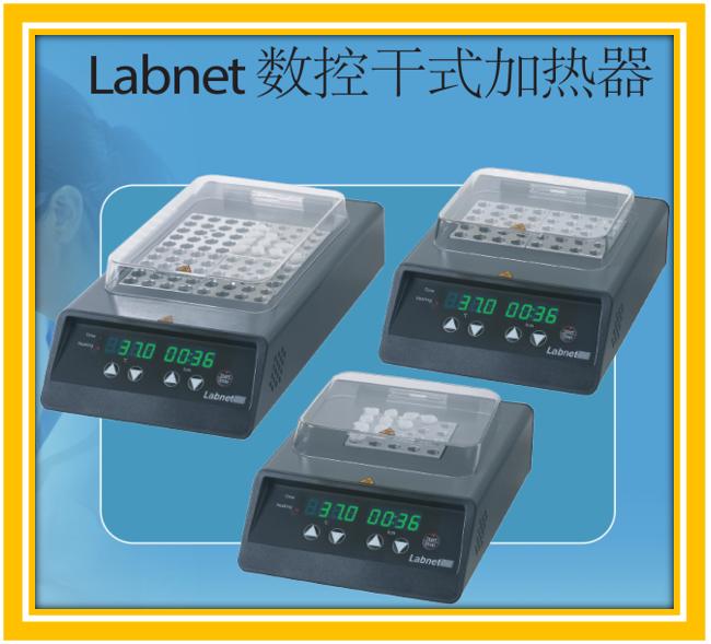 Labnet干式加热器D1302
