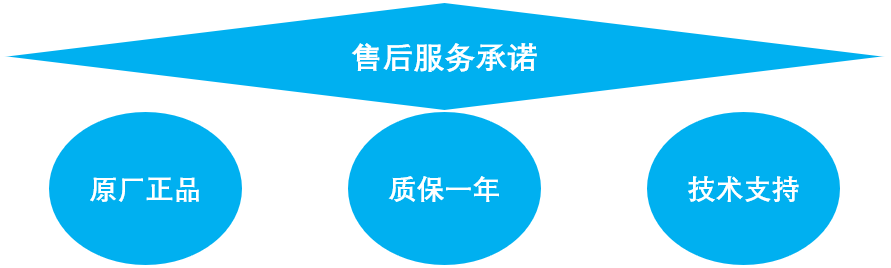 <strong><strong><strong><strong><strong><strong>大龙顶置式电子搅拌器OS20-Pro</strong></strong></strong></strong></strong></strong>