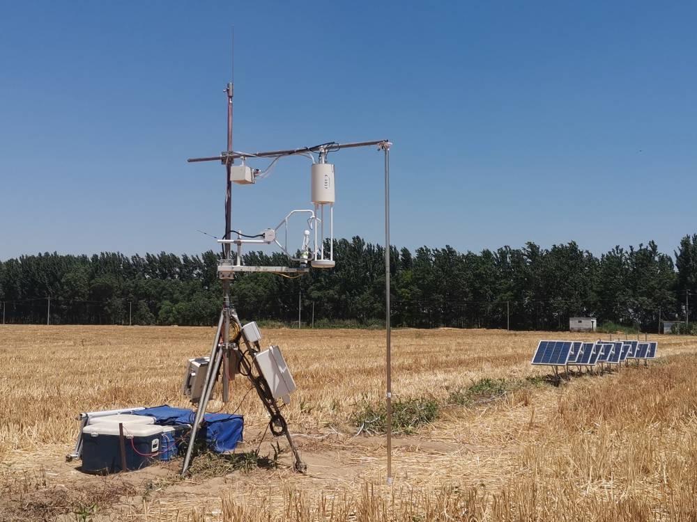 基于HT-8700E大气氨分析仪的农田涡动相关氨通量测量