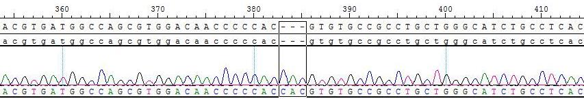 addb2c8c-c0b5-483a-be1c-1aab15a49c1f.png