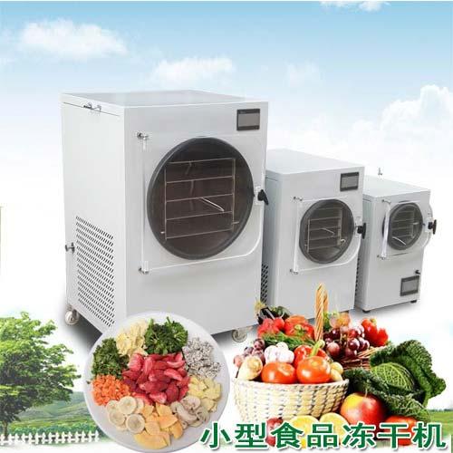 小型食品冷冻干燥机