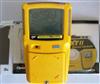 BW GasAlertMax XT II检测仪表
