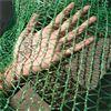 一次性防尘网批发价格//一次性防尘网保定专业销售