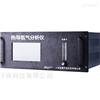 FHD300-H2 氢气浓度含量分析仪